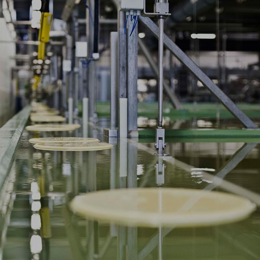 De zuivelsector heeft een aanzienlijke zoutverlaging gerealiseerd in Nederlandse Goudse kaas