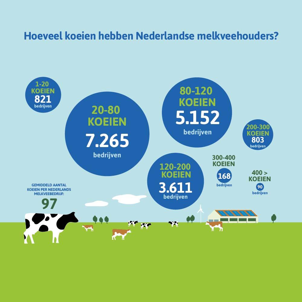 Hoeveel koeien hebben Nederlandse melkveehouders?