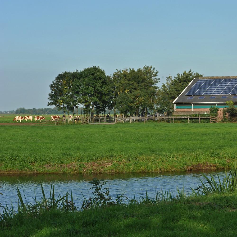 Nederlandse melk is steeds duurzamer